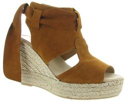 CONCHISA FAUSTA<br>Camel
