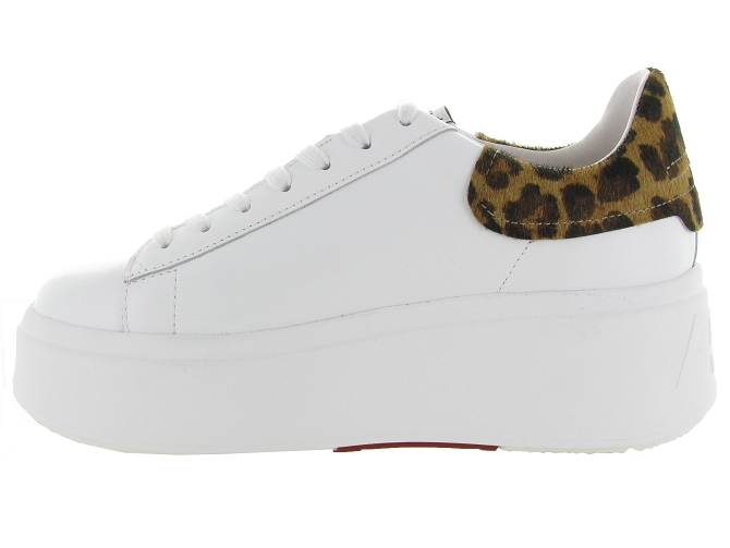 Ash italia baskets et sneakers moby blanc4639201_4